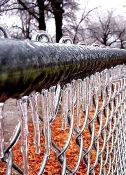 Ice by Sara Croft