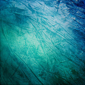 Ice by Sara  Meijer