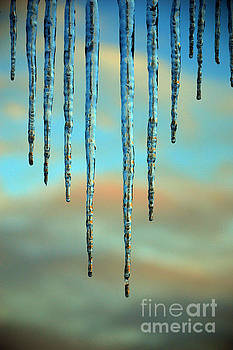 Susanne Van Hulst - Ice sickles - Winter in Switzerland