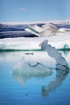 Francesco Riccardo Iacomino - Ice Swan