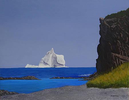 Iceberg at St Lunaire Newfoundland by Doug Goodale