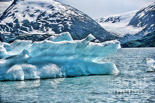 Iceberg Glacier Alaska  by Chuck Kuhn