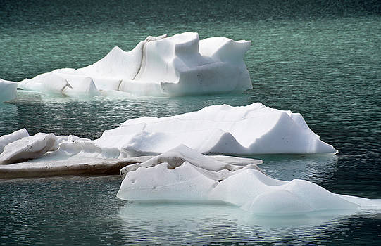 Icebergs in Upper Grinnell Lake by Bruce Gourley