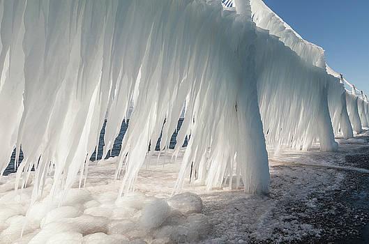 Iced Catwalk by Fran Riley
