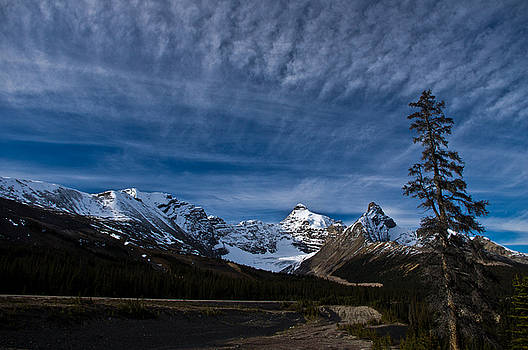 Jedediah Hohf - Icefield Parkway 5
