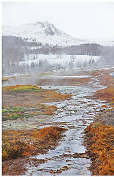 Iceland Geyser Park Mosses Grasses Vents Mountains Sky Iceland 2 2122018 1119.jpg by David Frederick