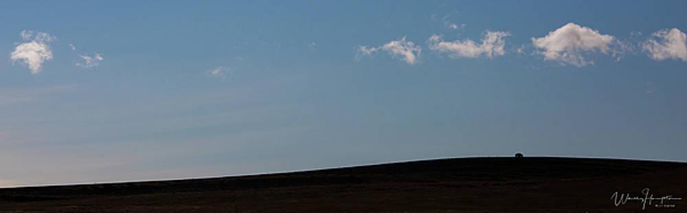 Iceland Landscape - 0940,S by Wally Hampton