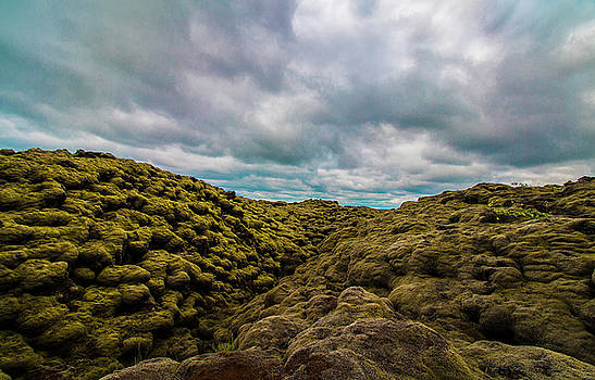 Venetia Featherstone-Witty - Iceland Moss and Clouds