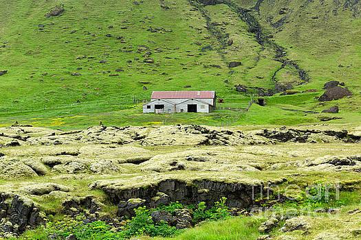 Iceland Pastoral I by Stuart Gordon