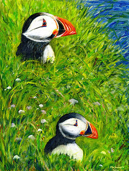 Iceland Puffins by Stan Sweeney