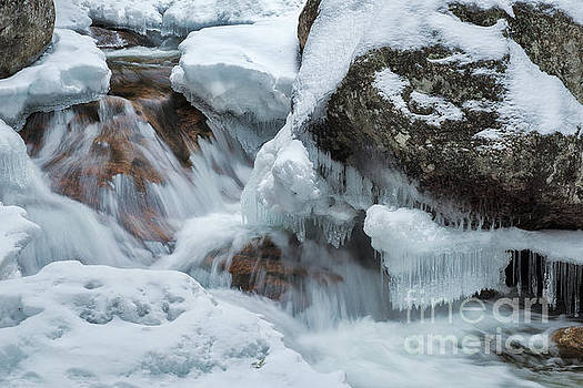 Icicles by Sharon Seaward