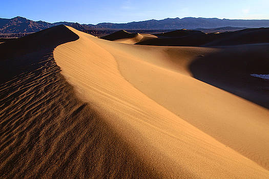 Iconic Dunes at Death Valley by Matt Cohen