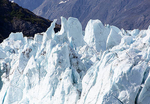 Ramunas Bruzas - Icy Art