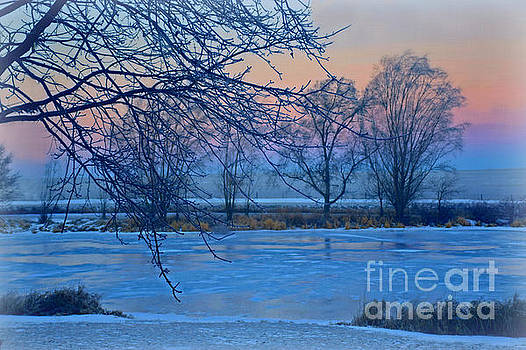 Icy Beauty by Kathy M Krause
