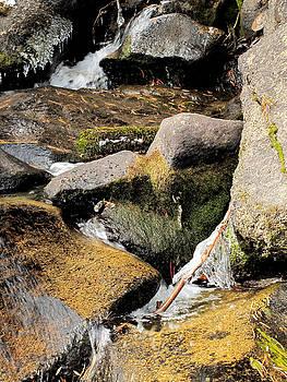 Larry Darnell - Icy Creek - Cascade Creek