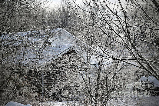 Sandra Huston - Icy Fingers of Winter