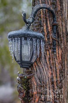 Icy Lantern by Jim McCain