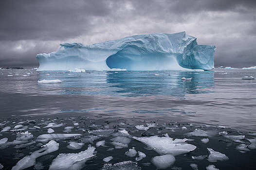 Icy Ocean by Linda Oliver