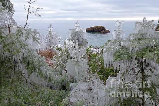 Icy Spendor  by Sandra Updyke