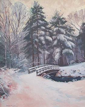 Icy Stream by Dianne Panarelli Miller