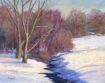 Icy Stream by Vikki Bouffard