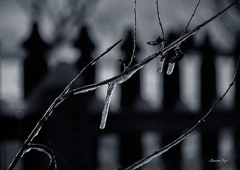 Karen Slagle - Icy Twig