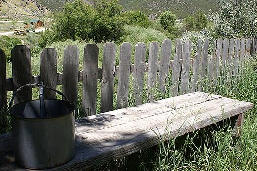 Idaho Farm2 by Cynthia Powell