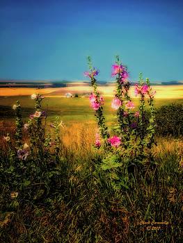 Idaho Farmhouse  ... by Chuck Caramella
