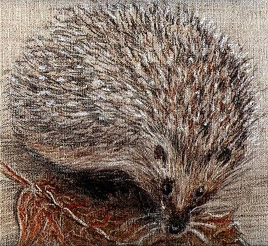 Igel im Herbst   Hedgehog in autumn by Birgit Schlegel