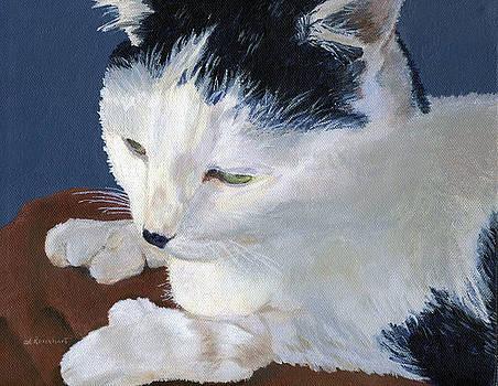 Iggy by Lynne Reichhart