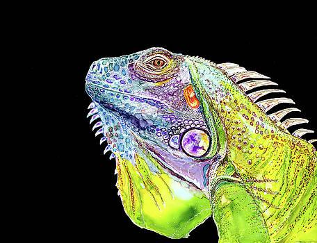 Iguana by Andrea Patton