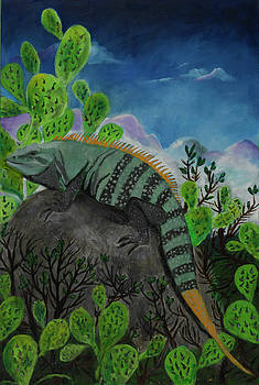 Iguana Rock by Jason Rosenstock