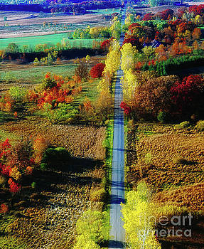 Illinois country road tree top sunset fall  by Tom Jelen