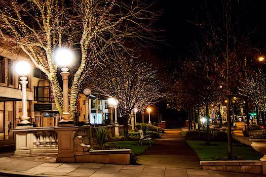 Illuminated gardens by Susan Tinsley