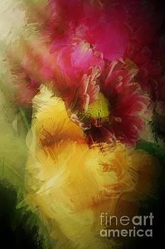 Jenny Revitz Soper - Illuminated