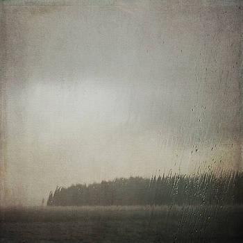 Illuminated Rain by Sally Banfill