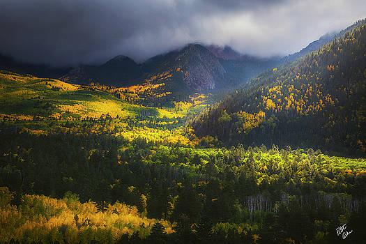 Illumination Cascades  by Peter Coskun