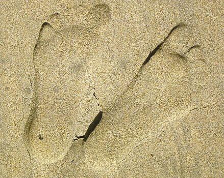 Gwyn Newcombe - Illusionary Feet