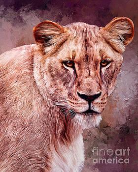 I'm Not Lion  by Tara Richardson