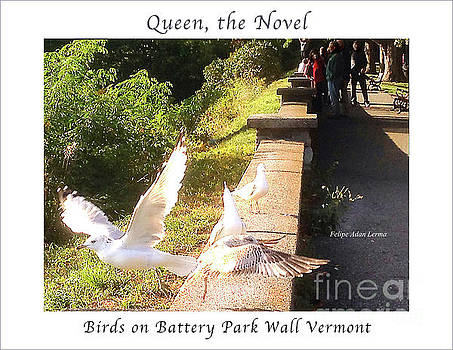Felipe Adan Lerma - Image Included in Queen the Novel - Birds on Battery Park Wall Vermont Enhanced Poster