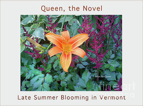 Felipe Adan Lerma - Image Included in Queen the Novel - Late Summer Blooming in Vermont 23of74 Enhanced Poster