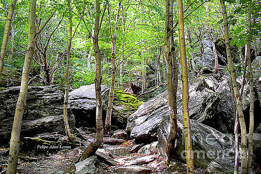 Felipe Adan Lerma - Image Included in Queen the Novel - Rocks at Smugglers Notch Enhanced