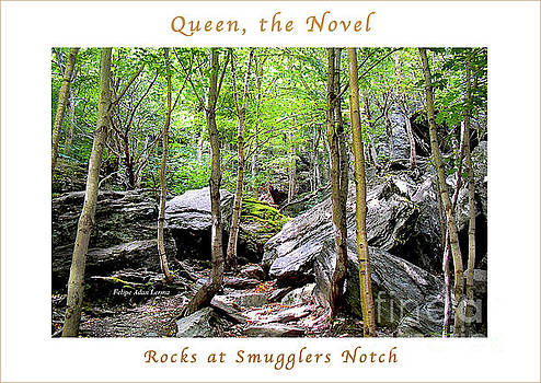 Felipe Adan Lerma - Image Included in Queen the Novel - Rocks at Smugglers Notch Enhanced Poster