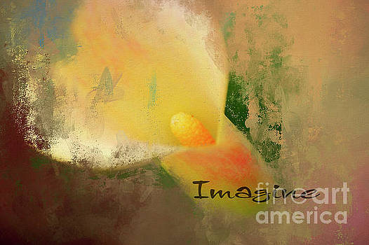 Imagine Calla Lily Abstract by Darren Fisher