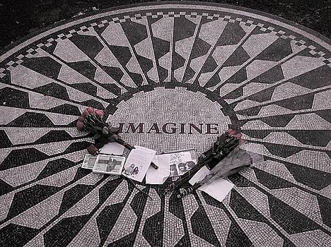 Kathi Shotwell - Imagine