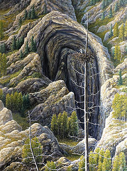 Immensity by Marc Dmytryshyn