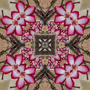 Impala Flower Mandala by Julian Venter