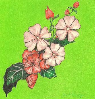 Impatiens Design by Janet Hinshaw