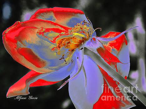 Impresion Floral by Alfonso Garcia