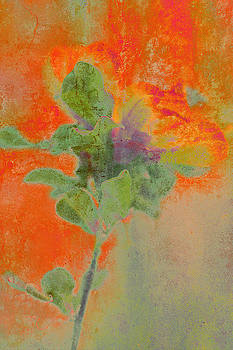 Impressionist Style Tulip Tree Flower by Suzanne Powers